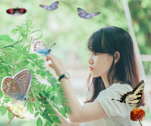 Butterflies are easily found in parks with flowers all around the world